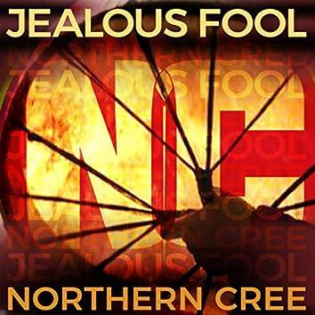 Jealous Fool