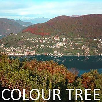 Colour Tree