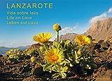 Lanzarote - Leben auf Lava: Vida sobre lava - Life on Lava - Ulrike Strecker