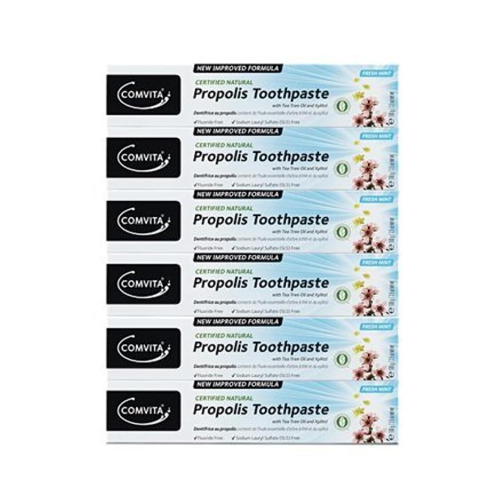 シングル申請者解体する100% ナチュラル プロポリス 歯磨き粉 6個セット PROPOLIS TOOTHPASTE PACK 100g x 6ea [並行輸入品]