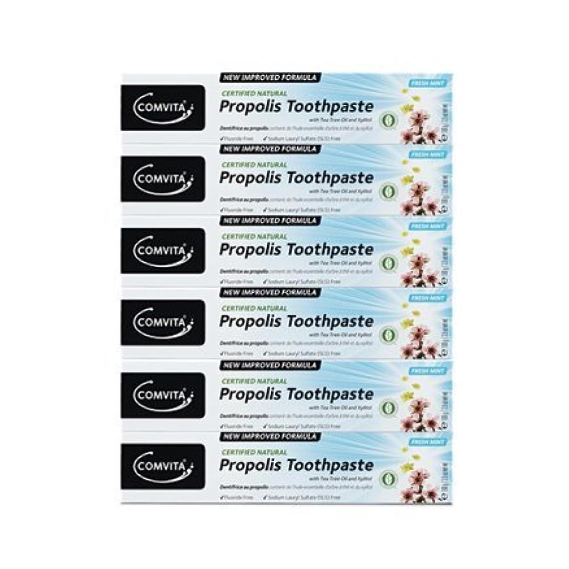 あえてバイパス概念100% ナチュラル プロポリス 歯磨き粉 6個セット PROPOLIS TOOTHPASTE PACK 100g x 6ea [並行輸入品]