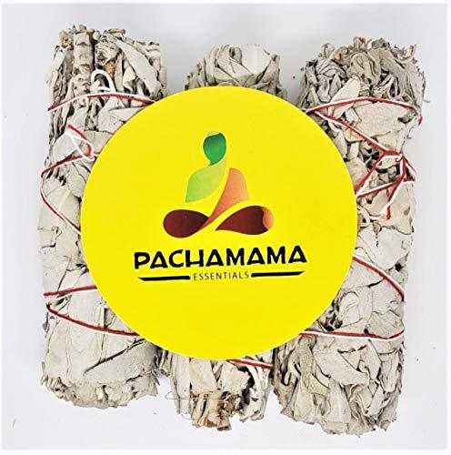 Pachamama Essentials Organic California White Sage Smudge Bundles Sticks 4'-5' (12) Premium