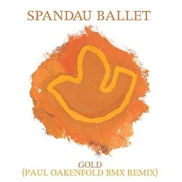 Gold (Paul Oakenfold BMX Remix)