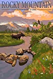 Rocky Mountain National Park, Colorado - Moose and Meadow (9x12 Art Print, Wall Decor Travel Poster)