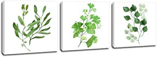 DVQ ART- Green Leaf Canvas Wall Art Painting Modern Giclee Prints Artwork Simple Style Artwork Ready to Hang for Home Decoration 3 Pcs/Set