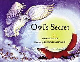 Owl's Secret (Last Wilderness Adventure)