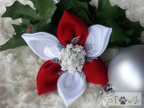 Red and White Christmas Flower Pet Collar Accessory