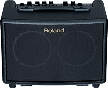 Roland Battery-Powered Acoustic Chorus Amp review