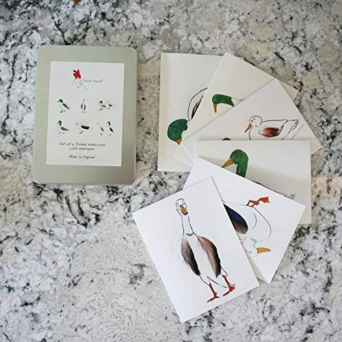 Cluck Cluck! Handmade Stationery & Party Supplies - Best Reviews Tips