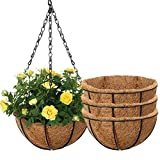 Tvird 4 Packs 12 Inch Large Hanging Wrought Iron Flower Baskets, Round Metal Hanging Planter Baskets with Coconut Palm Shell Lining,with Removable Chain Hanging Plant Rack for Indoor and Outdoor