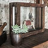 STUFF Loft Deko-Kasten Schaukasten Vitrine Vintage aus Glas und recyceltem Altholz - FSC-Zertifiziertes Recycling Produkt