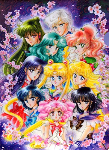 Art Poster Sailor Moon 18x24 inches Fabric Cloth Rolled Wall Poster Unframed for Wall Decoration