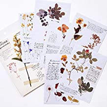 WSDJD Momo sulphuric acid paper background sticker retro English newspaper plant hand account primer material paper decoration stickers   explorer handwriting