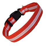 LED-Hundehalsband, aufladbar per USB-Anschluss, für gute Sichtbarkeit und mehr Sicherheit im Dunkeln, in 4 Farben und 3 Größen verfügbar, Batterien sind nicht im Lieferumfang enthalten - 3