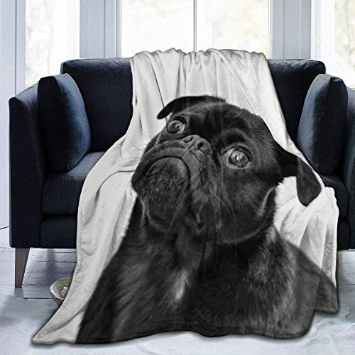 Cute Black Pug Dog Printed Blanket Throw Lightweight Super Soft Micro Fleece Throw Blankets Fit Couch Bed Living Room Sofa Chair 60'X50'