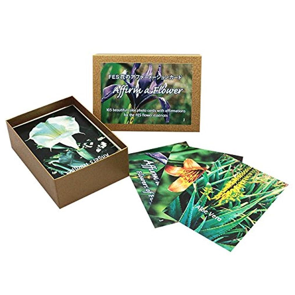 集まる活力ギネスFESフラワーエッセンス/その他[アファーメーションカード全103枚(日本語版)]