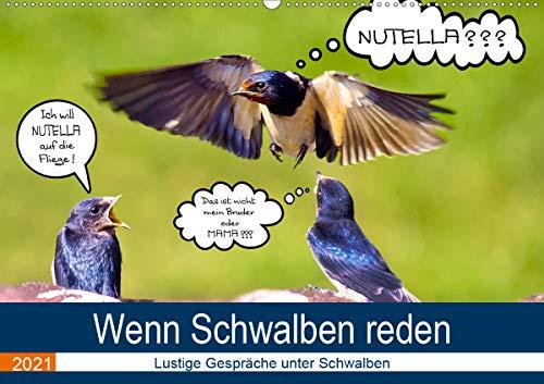 Wenn Schwalben reden (Wandkalender 2021 DIN A2 quer)