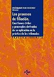 Los procesos de filiación: Cuestiones civiles y procesales derivadas de su aplicación en la práctica de los tribunales (Derecho - Práctica Jurídica)
