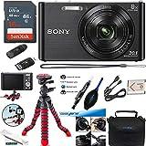 Pocket Sized Digital Cameras - Best Reviews Guide