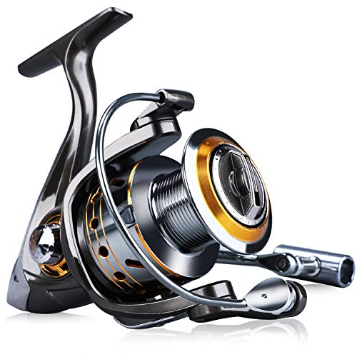 Sougayilang Fishing Reel Spinning -12+1BB Ultralight Smooth Powerful Spinning Reels for Freshwater Saltwater Bass Fishing(13bbdk-1000)