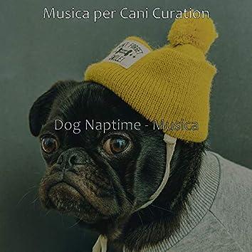 Dog Naptime - Musica