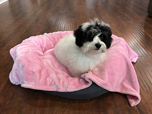 Best Pink Bed for Small Dogs