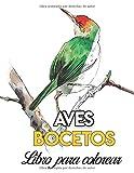 Aves libro para colorear: libro de dibujos para pintar acuarela fácil acrílico oleo