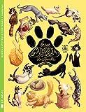 Breve Gatopedia Ilustrada (Colección Gatos)