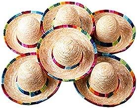 Floratek Paquete de 6 Mini Sombreros Mexicanos, 6 Pulgadas de Paja, Mini Sombreros para decoración de Fiestas, Animales para niños, Perros y Gatos