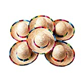 Floratek 6 Stück Mini-mexikanische Hut, 15,2 cm, gewebter Mini-Sombrero-Hut für...
