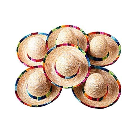 Floratek 6 Stück Mini-mexikanische Hut, 15,2 cm, gewebter Mini-Sombrero-Hut für Party-Dekorationen, für Kinder, Tiere, Hunde, Katzen (Nr. 1) (Nr. 1)