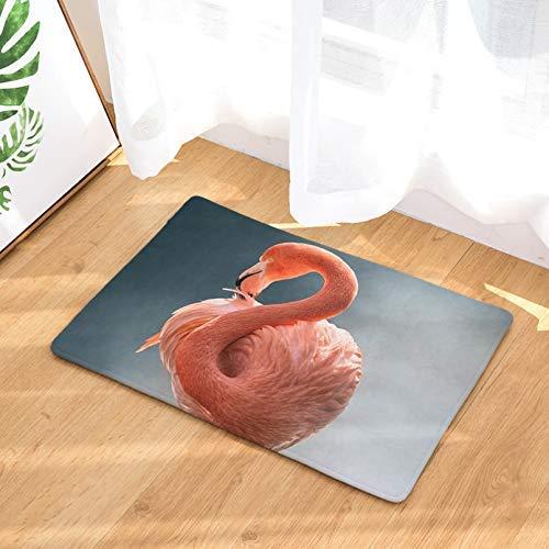 Alfombra de baño con estampado de flamenco, absorbente para baño, alfombra para baño, alfombra para cocina, decoración del hogar, alfombrilla para puerta de 50,8 x 81,3 cm
