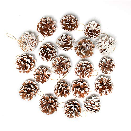Rocinha Christmas Pine Cones Natural Pinecones Bulk Ornaments with String for Craft Christmas Tree Ornaments Hanging Decoration((20 Pieces,2-2.4 Inches)