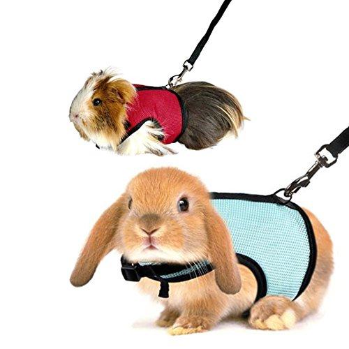 UxradG - Arnés de malla y correa para conejos y hámsteres
