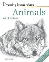 Animals Drawing Masterclass