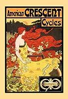 """American CrescentサイクルFineアートキャンバス印刷( 20"""" x30"""" )"""