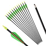 30'' Fiberglass Arrows Archery Target Arrow Hunting Shooting Practice Target for Professional Youth Archery Recurve Bow Shooter(Pack of 12)