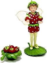 Flower Fairies Secret Garden - Strawberry Fairy…