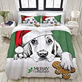 CANCAKA Duvet Cover Set,Christmas Dog Basset Hound Portrait in Santa's Hat Gingerbread,Microfiber 3 Piece King Bedding Set with 2 Pillowcases