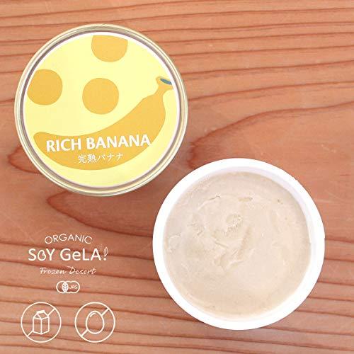 Soy GeLA! RICI BABABA 100m 12個 国産 バナナ オーガニック 低カロリー 豆乳 ジェラート ギフト