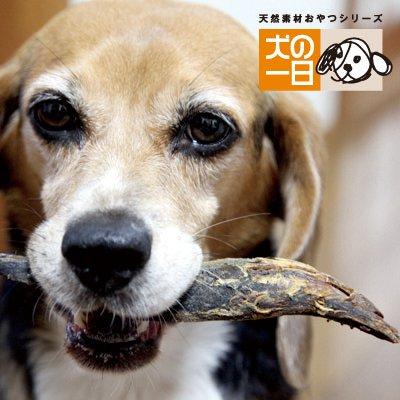 高知県産カリカリ宗田かつお節(大) 2本 犬 おやつ 魚【無着色・無香料・保存料完全無添加】