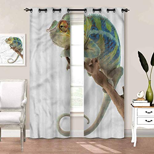 Draperies & Curtains Reptile, Panther Watching The World Blackout Thermal Insulated Curtain for Bedroom and Sliding Glass Door W55 x L39 Inch