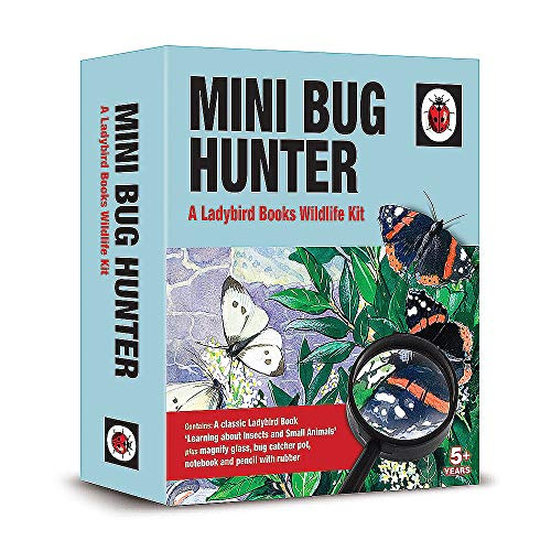 Ladybird Bug Hunter
