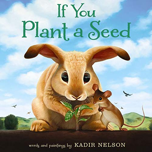 If You Plant a Seed New Jersey