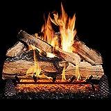 GasLogGuys 18 Inch Grand Mountain Split Oak Vented Natural Gas Log Set + H-Burner - Match Light