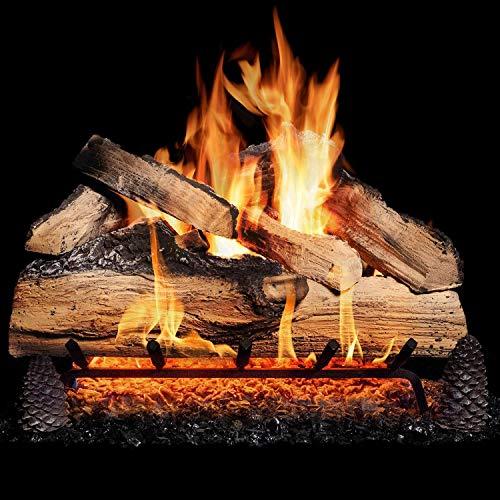 GasLogGuys 24 Inch Grand Mountain Split Oak Vented Natural Gas Log Set + H-Burner - Match Light