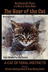 The Year of the Cat: A Cat of Feral Instincts
