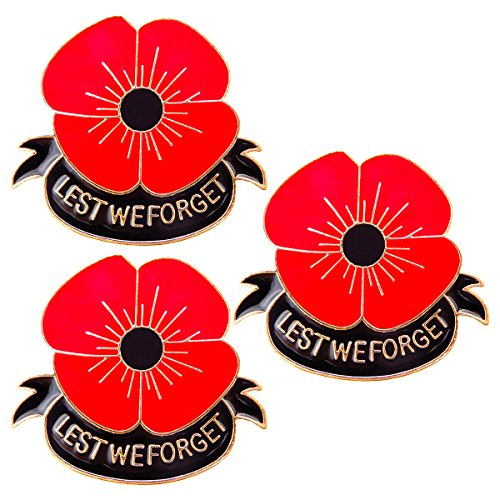 RareLove 3 PCS Enamel Poppy Pin Badge Remembrance Memorial Day Gifts Lest We Forget
