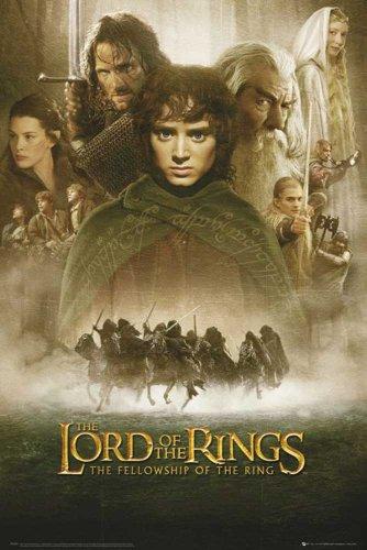 Herr der Ringe - Fellowship One Sheet - Film Movie Kino Poster - Grösse 61x91,5 cm
