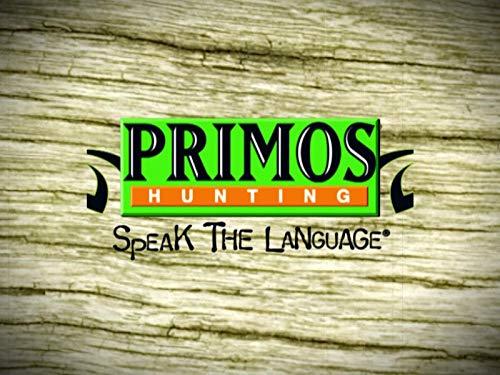 Team Primos Hunts Deer In Mississippi